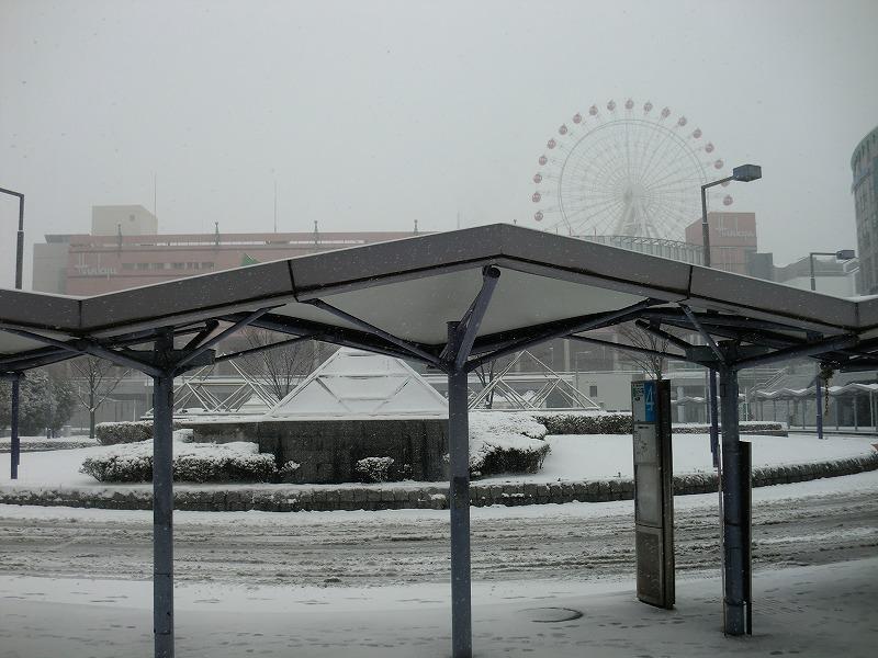 横浜も大雪になりそうです。